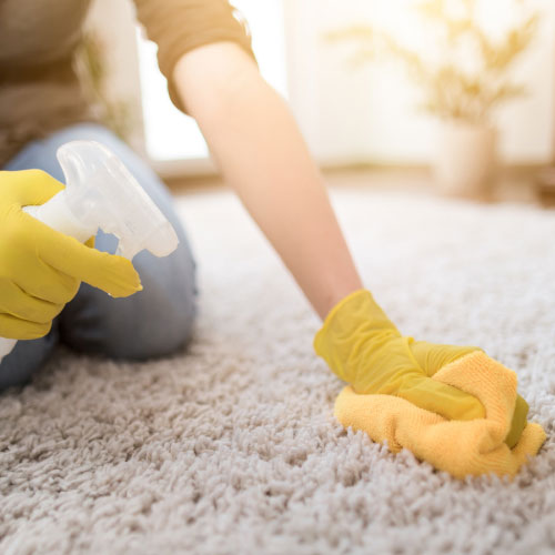 Carpet Disinfection And Odour Removal