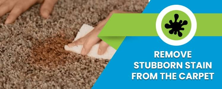 Stubborn Stains On The Carpet And Cleaning Tips