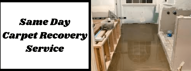 Same Day Carpet Recovery Service